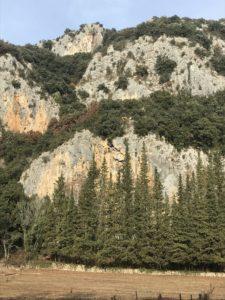 La grotte Chauvet sera bientôt raccordée au réseau électrique